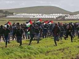 PalestineDoR1
