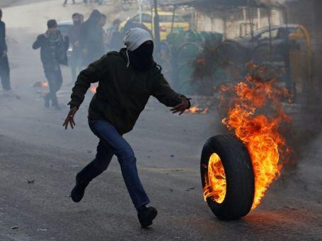 PalestinianDoR2
